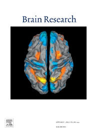 Brain Research - ISSN 0006-8993