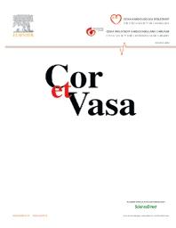 Cover image for Cor et Vasa