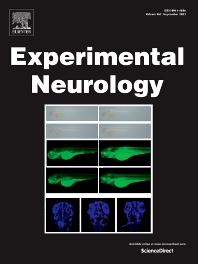 Experimental Neurology