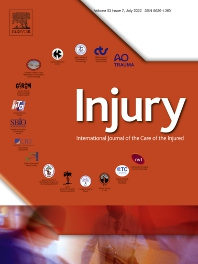 Cover image for Injury