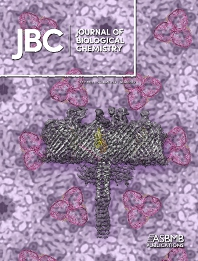 Cover image for Journal of Biological Chemistry