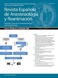 Cover image for Revista Española de Anestesiología y Reanimación