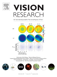 Cover image for Vision Research