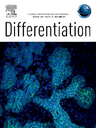 Cover image for Differentiation