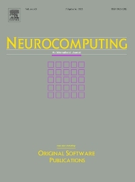 Neurocomputing - ISSN 0925-2312