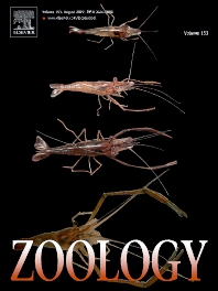 Cover image for Zoology