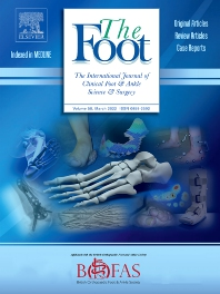 Cover image for The Foot