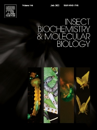 Cover image for Insect Biochemistry and Molecular Biology