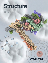 Cover image for Structure
