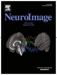 Cover image for NeuroImage