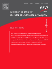 European Journal of Vascular and Endovascular Surgery - ISSN 1078-5884