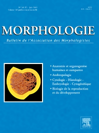 Cover image for Morphologie