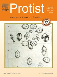 Cover image for Protist
