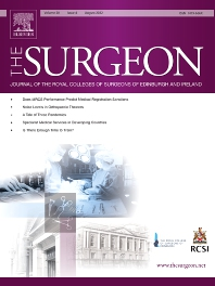 Cover image for The Surgeon