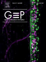 Cover image for Gene Expression Patterns