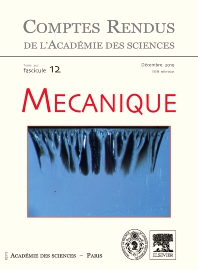 Cover image for Comptes Rendus: Mécanique