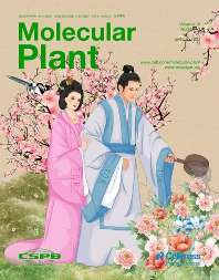 Cover image for Molecular Plant