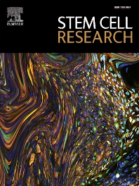 Cover image for Stem Cell Research