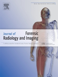Cover image for Forensic Imaging