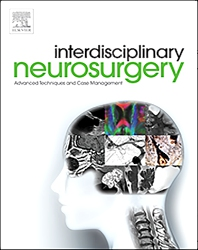 Cover image for Interdisciplinary Neurosurgery