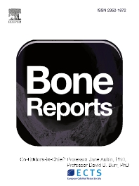 Cover image for Bone Reports