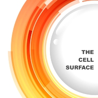 Cover image for The Cell Surface