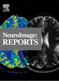 Cover image for Neuroimage: Reports