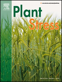 Cover image for Plant Stress