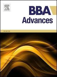 Cover image for BBA Advances