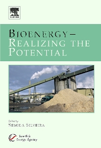 Bioenergy - Realizing the Potential, 1st Edition,Dr. Semida Silveira,ISBN9780080446615