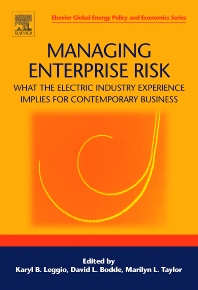 Cover image for Managing Enterprise Risk: What the Electric Industry Experience Implies for Contemporary Business