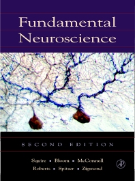Cover image for Fundamental Neuroscience