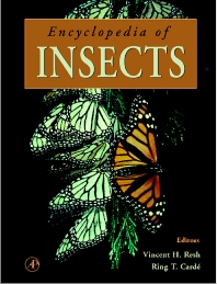 Cover image for Encyclopedia of Insects