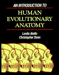 Cover image for An Introduction to Human Evolutionary Anatomy