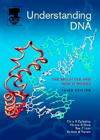 Cover image for Understanding DNA