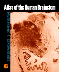 Cover image for Atlas of the Human Brainstem