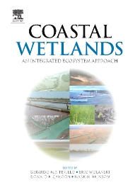 Coastal Wetlands, 1st Edition,Gerardo Perillo,Eric Wolanski,Donald Cahoon,Mark Brinson,ISBN9780080932132