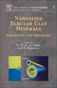 Cover image for Nanosized Tubular Clay Minerals