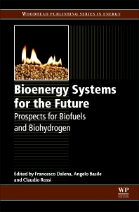 Cover image for Bioenergy Systems for the Future