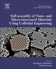 Cover image for Computational Modelling of Nanoparticles