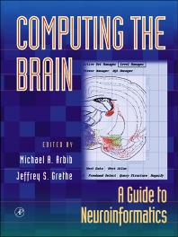 Cover image for Computing the Brain