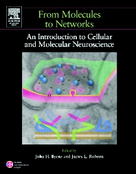 From Molecules to Networks - 1st Edition - ISBN: 9780121486600, 9780080491356