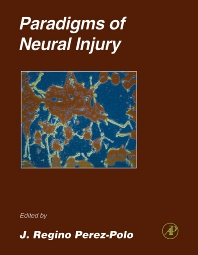 Cover image for Paradigms of Neural Injury