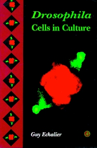 Cover image for Drosophila Cells in Culture
