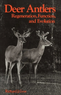 Cover image for Deer Antlers
