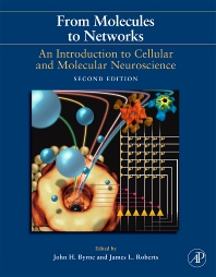 Cover image for From Molecules to Networks