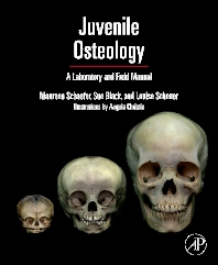 Cover image for Juvenile Osteology