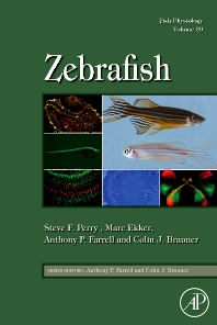 Cover image for Fish Physiology: Zebrafish