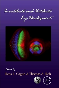 Invertebrate and Vertebrate Eye Development