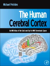 The Human Cerebral Cortex - 1st Edition - ISBN: 9780123869388, 9780123869739